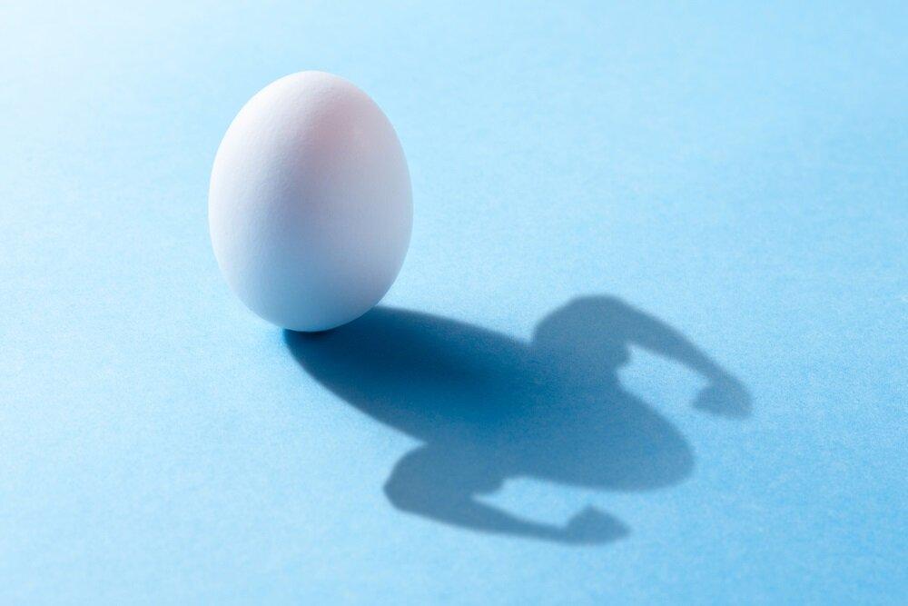 eieren gezond